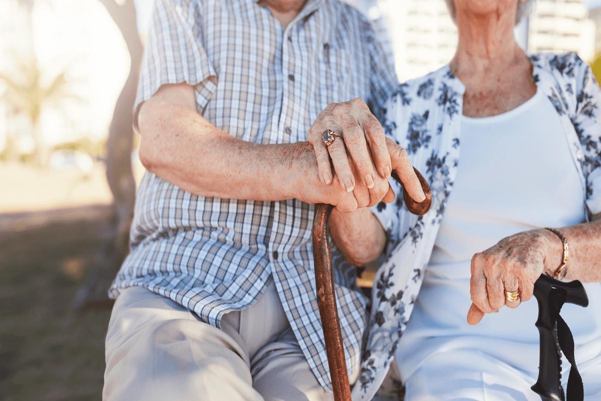 Пара пенсионеров
